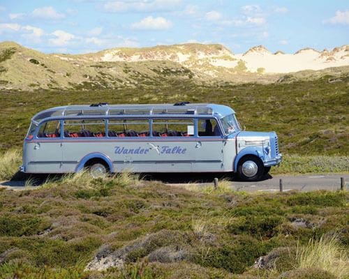 Bus und Landschaft
