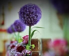 Blumen in Lila zur Hochzeit