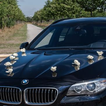 Autoschmuck Hochzeit Rosen, 10 St., creme