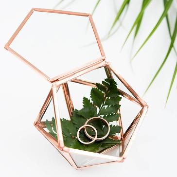 Ring Box / Deko Box Mini-Terrarium