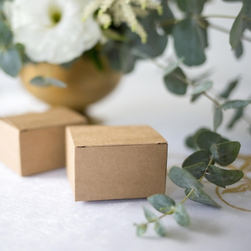 Gastgeschenk Schachtel Kraftpapier, 6 x 5,5 x 3,5 cm, 10 St.