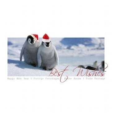 "Weihnachtskarte ""Pingiun"""