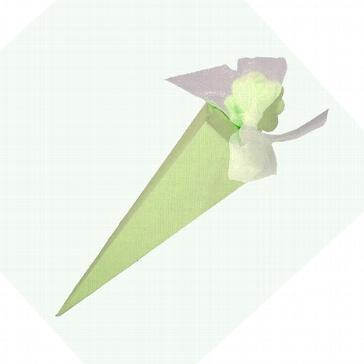 Kartonage Tüte lindgrün