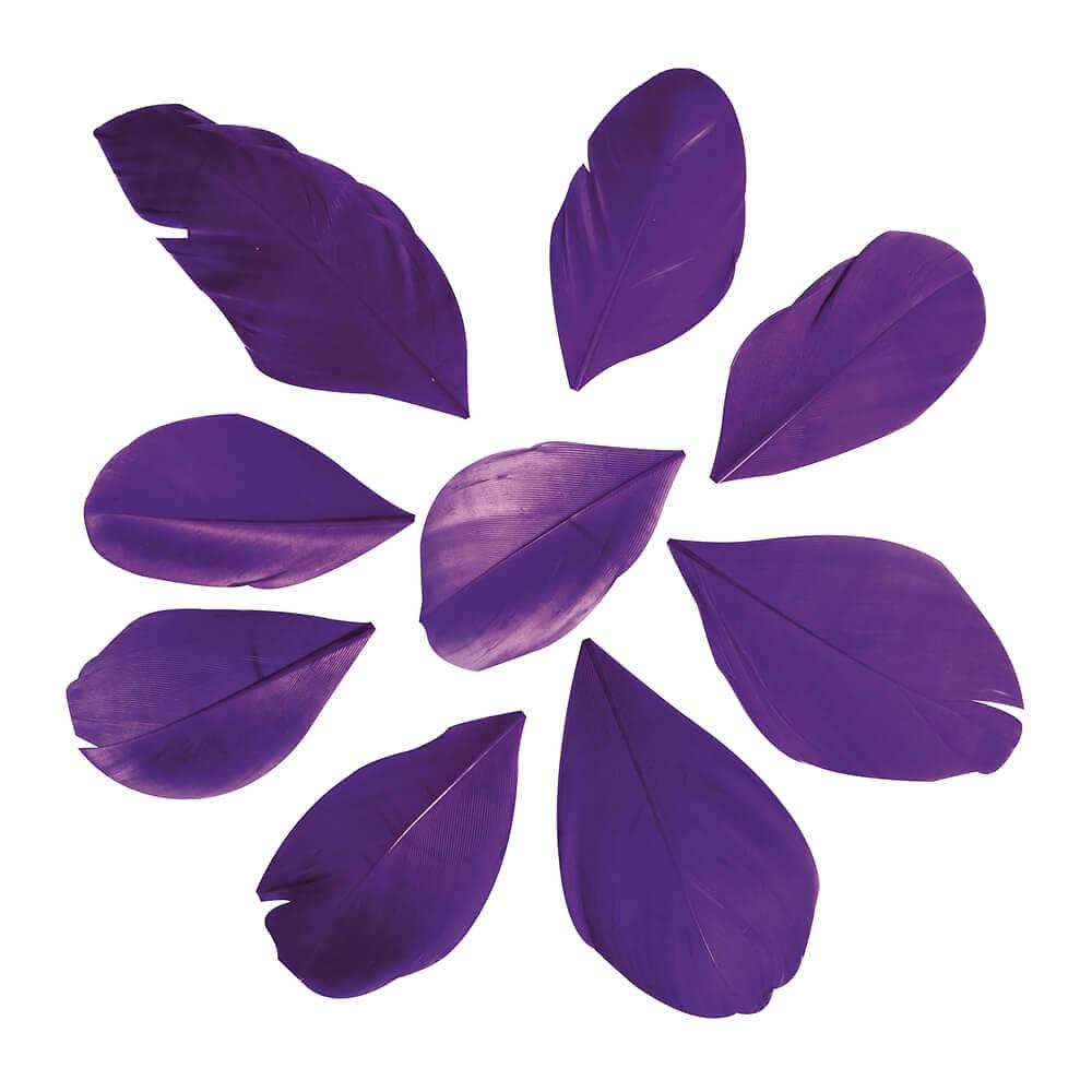 deko federn violett ca 6 cm 36 st. Black Bedroom Furniture Sets. Home Design Ideas