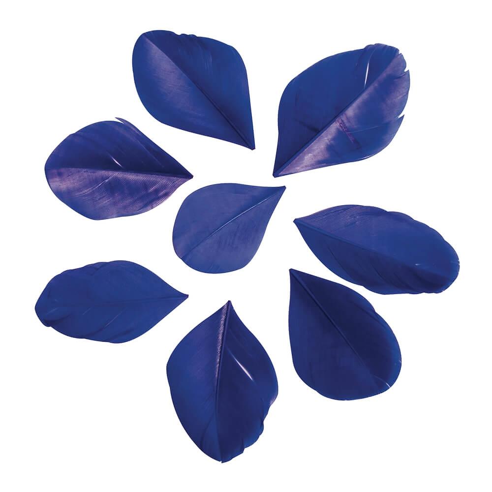 deko federn royal blau ca 6 cm 36 st. Black Bedroom Furniture Sets. Home Design Ideas