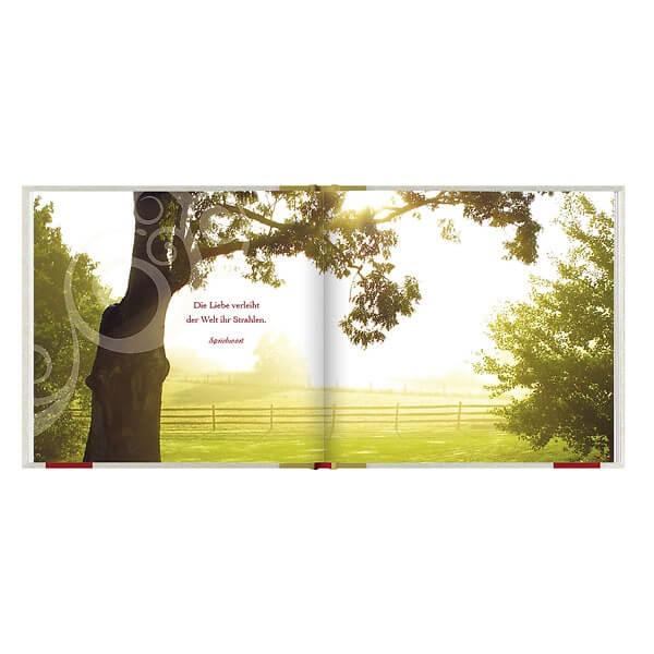 Geschenkbuch Zur Goldenen Hochzeit Die Besten Wunsche