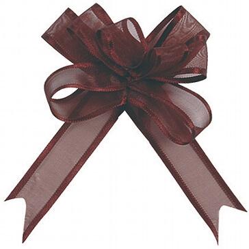 Geschenkverpackung Organzaschleife Mini in Braun