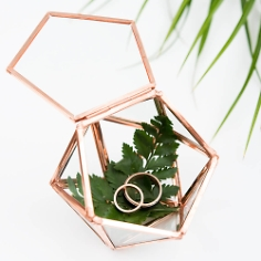 Ring Box / Deko Box Mini-Terrarium