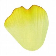blutenblatter-gelb.jpg