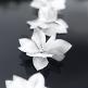 Autoschmuck Motorhaube Blumen Weiss Detail