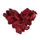 Rosenblätter rot klein herz