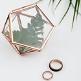 Mini-Terrarium als Ringbox oder Deko
