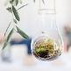 Hängedeko Glas zum Befüllen, 10 x 9,5 x 15 cm