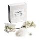 Set Hochzeitsnacht creme - Geschenkebox - Handschellen - Federpuschel